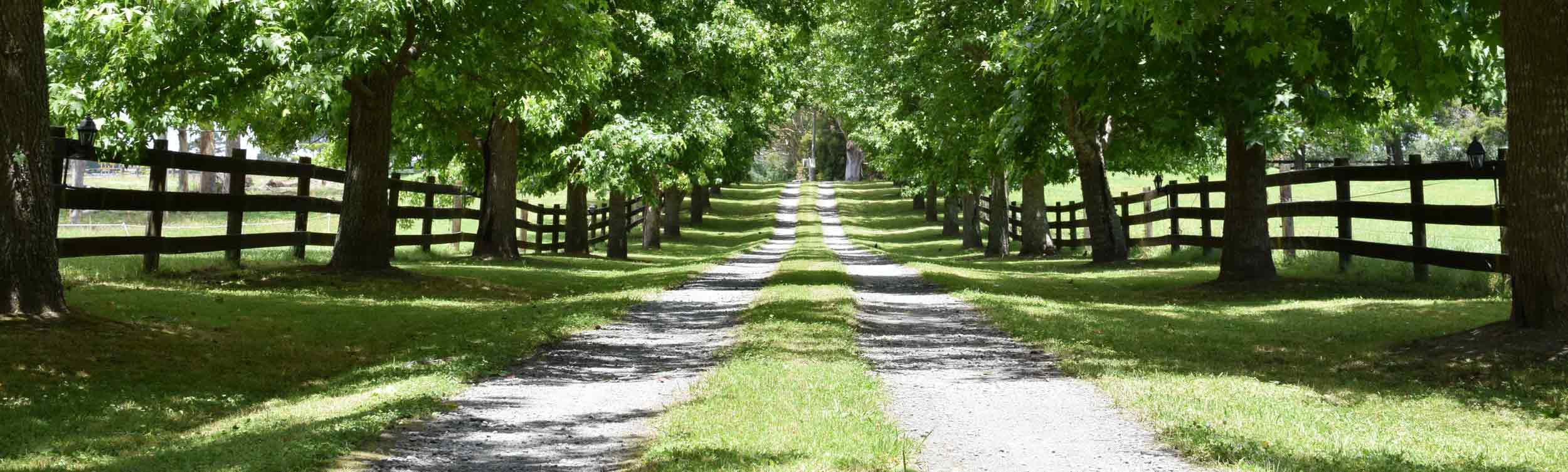 Fence along a country driveway by Finer Lawn & Landscaping